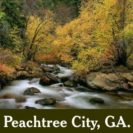 Peachtree City, GA